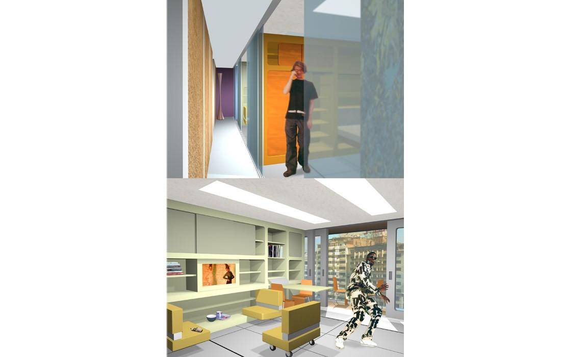 future vision housing feld architecture l architectes paris 75007. Black Bedroom Furniture Sets. Home Design Ideas